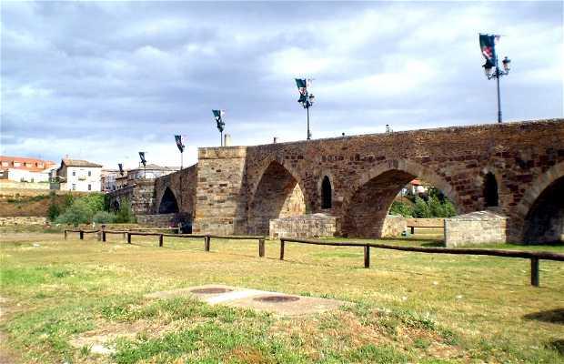Ponte del Passo Honroso a Hospital de Órbigo