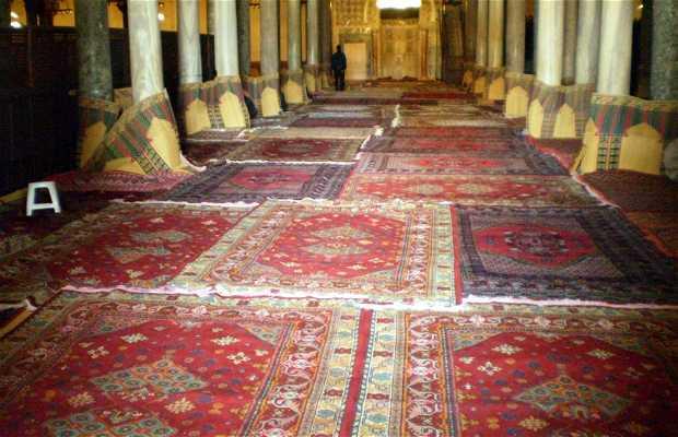 Prayer Room (Sidi Okba Mosque)