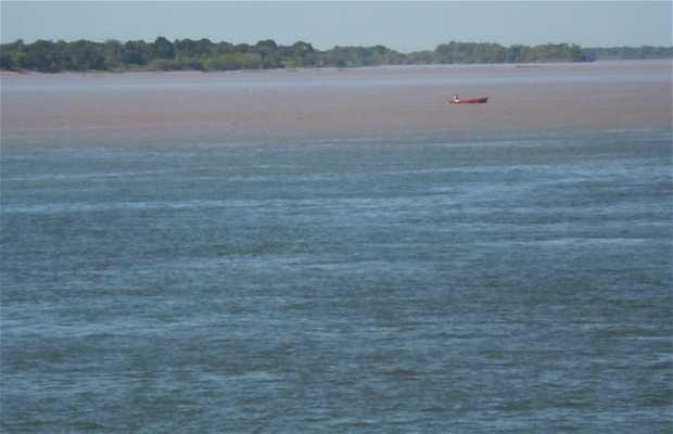 Le fleuve Paraguay