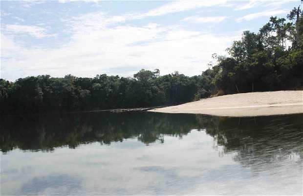 Isla Ratón