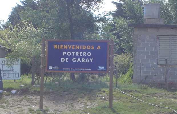 Protero Garay