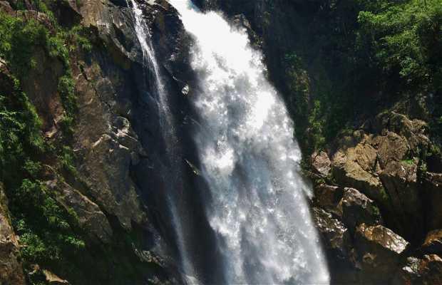 Parque Estadual da Serra do Mar - Nucleo Cunha