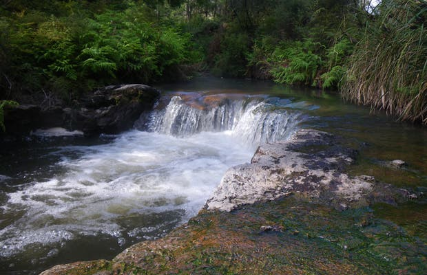 River Kerosene Creek
