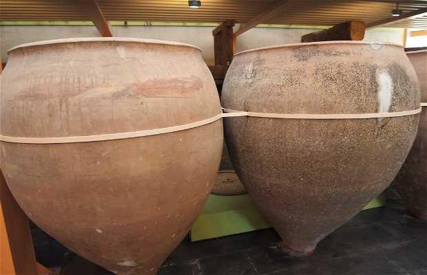 Musée Del Aceite (Musée du Pétrole)