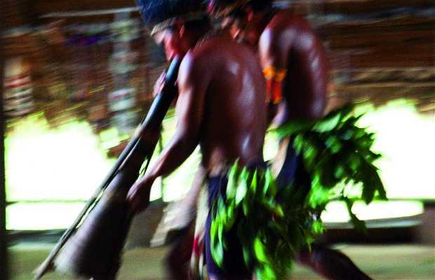 Complejo de conservación de la Amazonia central