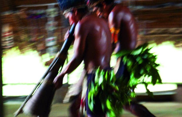 Complexo de conservação Amazônica
