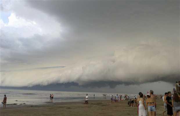 Mar del Tuyú