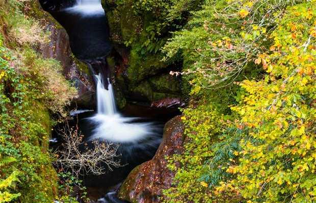 Saja-Besaya Natural Park