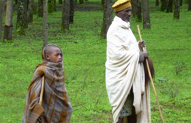 Oromo Tribe