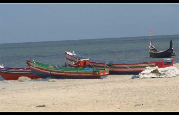Playa de Alappuzha