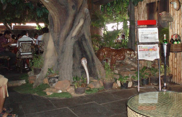 Restaurante The Jungle