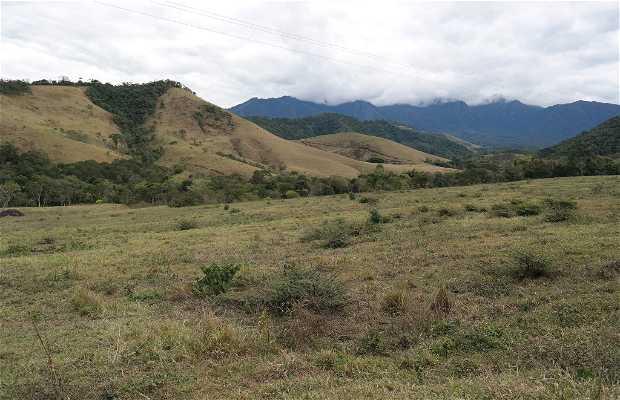 Área de Proteção Ambiental da Serrinha do Alambari