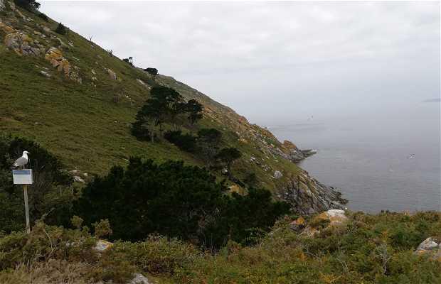 Observatorio de Aves Islas Cíes
