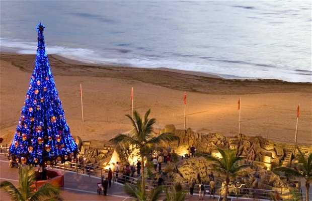 Feliz Navidad desde Gran Canaria