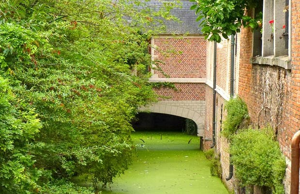 Groen Waterke