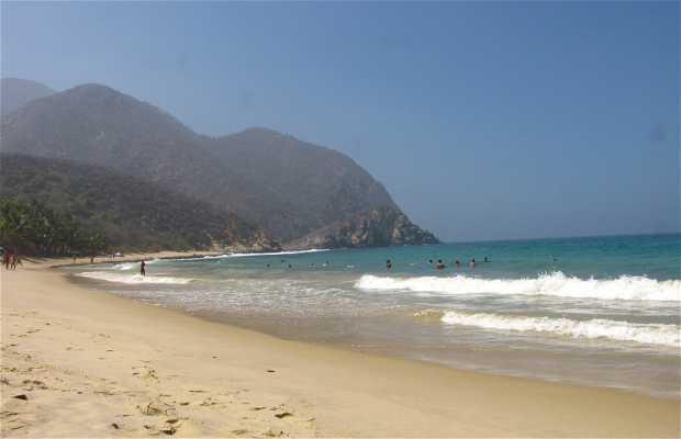 Playa de Cepe