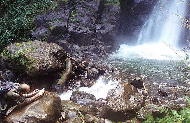 La cascade de San Luis et la forêt nuageuse