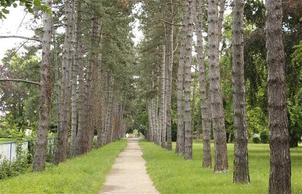 Parque Ezredévév