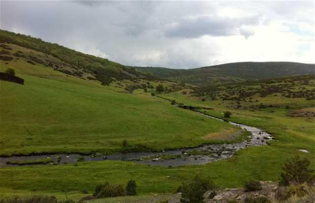 Río Lillas