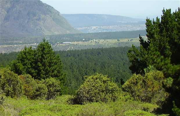 La Laguna Verde