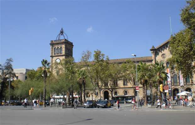 Plaza Universitat