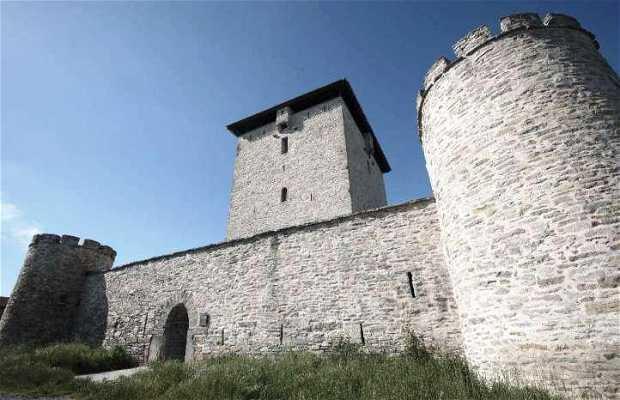 Mendoza Tower