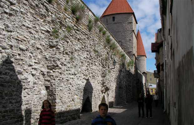 Castillo toompea
