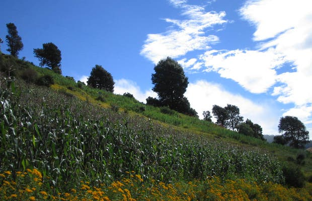 Plateau of Los Cuchumatanes