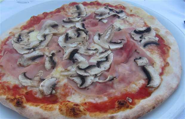 Ristorante Pizzeria Gallo Cedrone