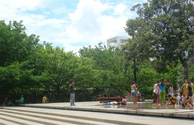 Barefoot Park (Parque de los Pies Descalzos)