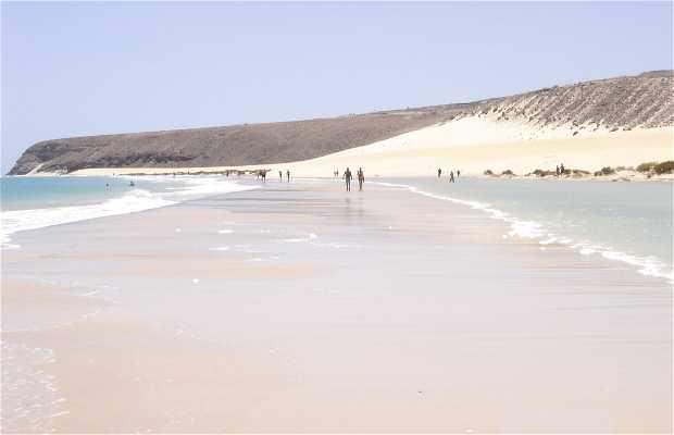 Jandía Beaches
