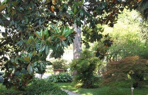 Jardín Botánico de Padua