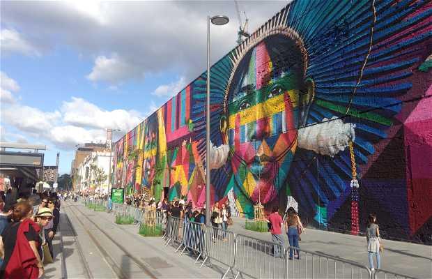 Grafite Etnias