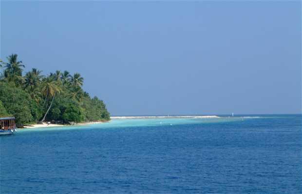 Isla Vilamendhoo