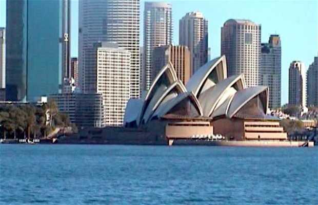 Promenade dans la Baie de Sydney