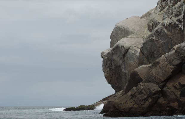 Pedra Perfil do Macaco