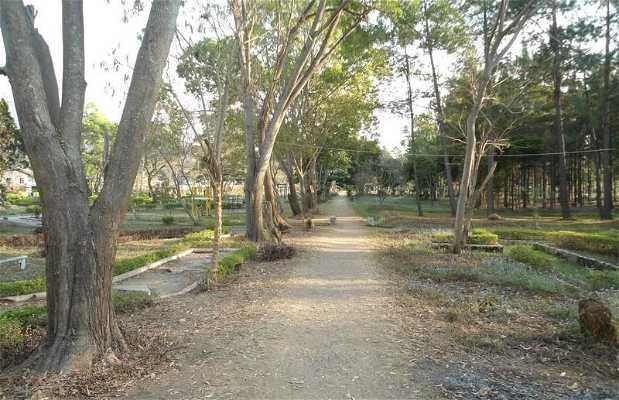 Le jardin de Kalaw