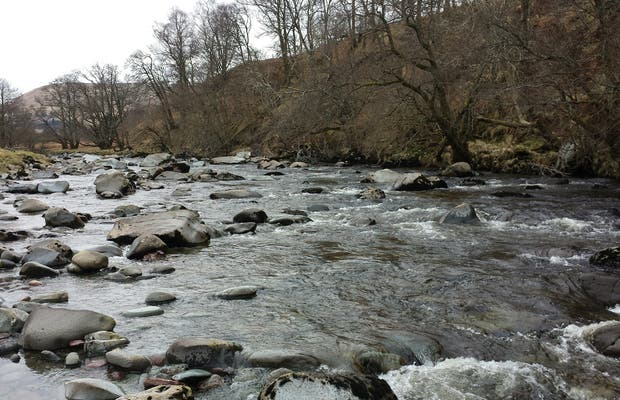 Río Artney