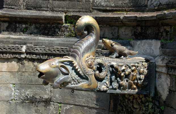 Naga Pokhari