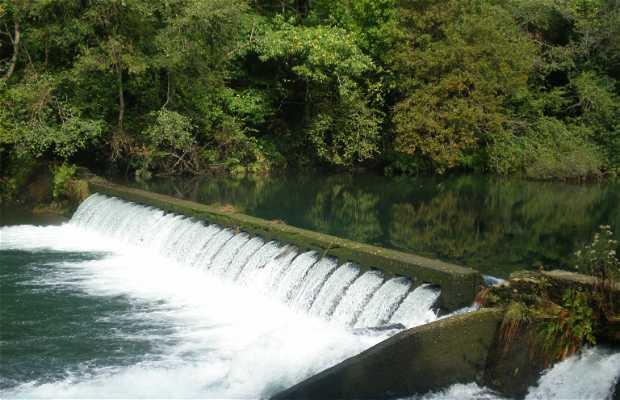 Salto de agua en Fragas del Eume