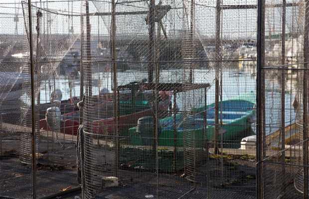 Port de rives thonon les bains 1 exp riences et 10 photos for Garage point s thonon les bains
