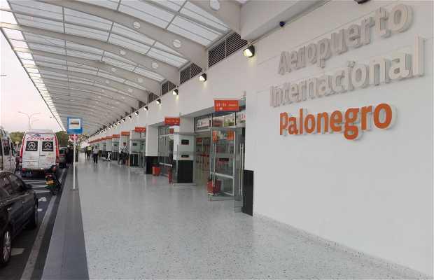 Aeropuerto Internacional Palo Negro