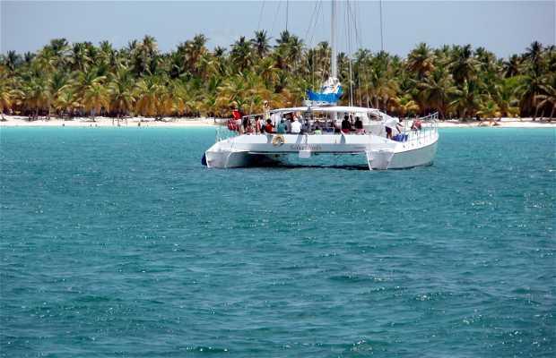 Excursión en catamarán a isla Saona