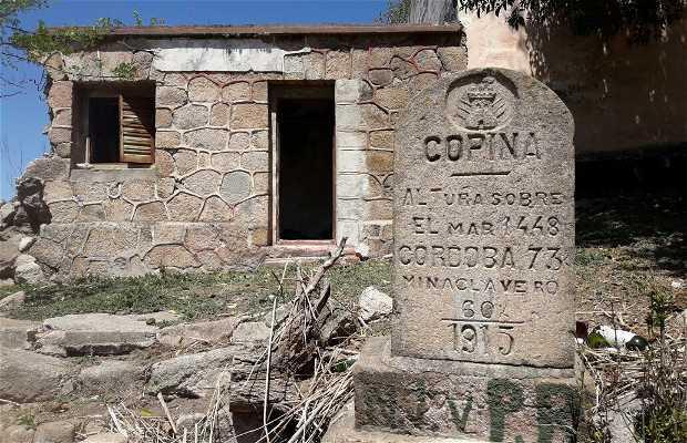 Copina