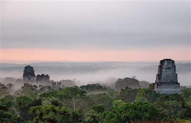 Le Rovine di Tikal