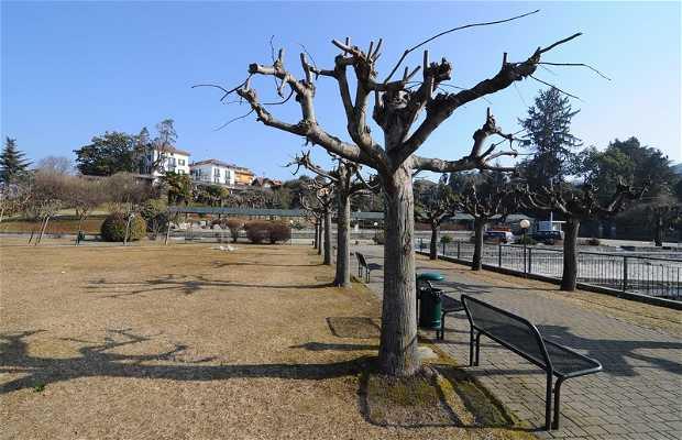 Parco pubblico Gianni Rodari