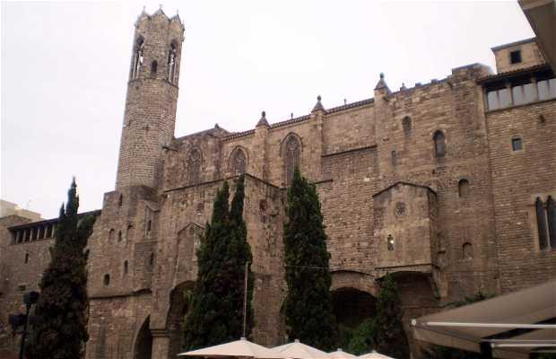 Barcino: Murallas romanas y Torres de defensa