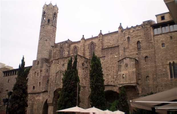 Mura romane e torri di difesa dell'antica Barcino