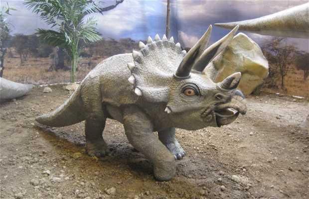 Dinosaurios Park