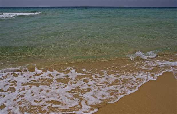 Playa Posto Vecchio